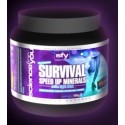 Speed Up Minerals  Science4you Survival