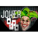 Bañador Chico WP Joker